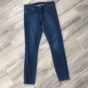 Liverpool Dark Wash Skinny Jeans
